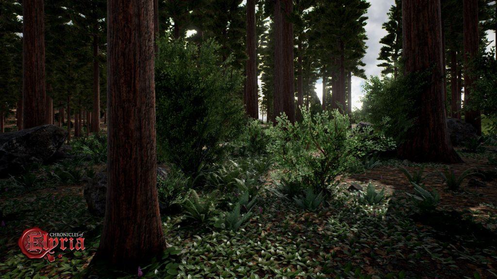 bosque-coe